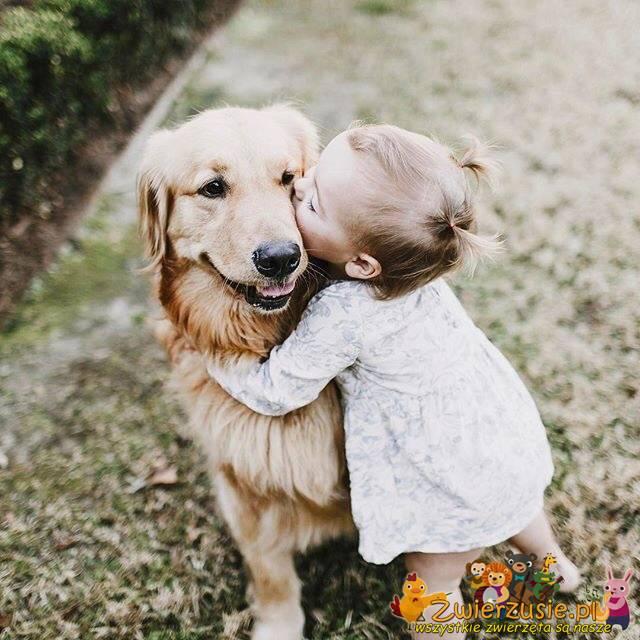 Golden i dziecko