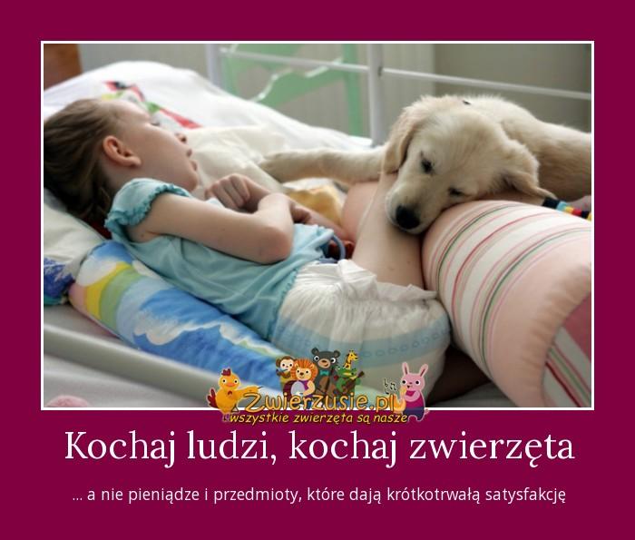 Kochaj ludzi, kochaj zwierzęta