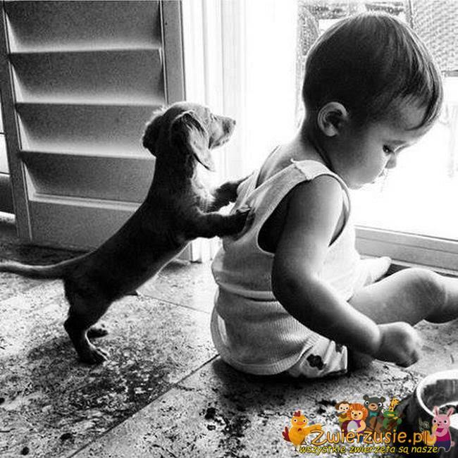Dziecko i piesek